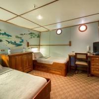 Дайвинг-сафари на Кокосе, судно Argo, каюта 4