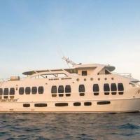 Судно Majestic Explorer, дайвинг на Галапагосских островах