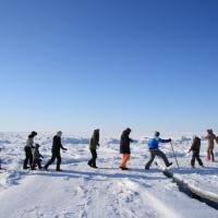 экотуристические экспедиции на Ругозерскую губу