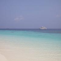 Мальдивы, дайвинг-сафари. Автор фото Вепренцев Роман. Фотобанк RuDIVE