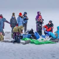 Наблюдение за бельками. На дрейфующем льду. Автор фото Илья Труханов. Тур RuDIVE
