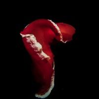 Красное море, Фери Шоалс. Испанский танцор. Автор фото Дмитрий Портнов. Фотобанк RuDIVE