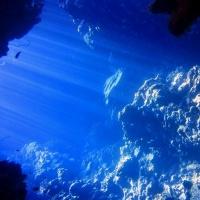Дайвинг в Египте, Красное море, дайв-клуб RuDIVE. Подводный лабиринт. . Автор фото Илья Труханов