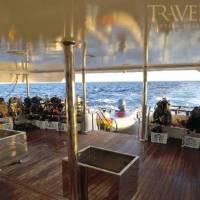 Яхта Neo для дайвинг-сафари в Египте на Красном море. Дайв-дек