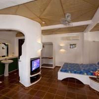 Executive & Honeymoon Suite