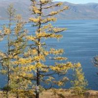 Дайвинг-тур на озеро Байкал. Берег Байкала
