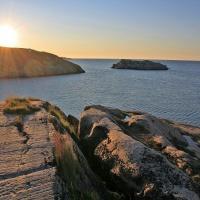 дайвинг-тур на Баренцевом море