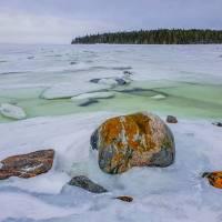 """Дайв-центр """"Полярный круг"""". Природа в заливе. Автор фото Илья Труханов. RuDIVE"""