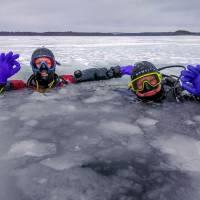 """Дайв-центр """"Полярный круг"""". Курс PADI Ice Diver на Белом море. Автор фото Илья Труханов. RuDIVE"""